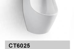 CT6025